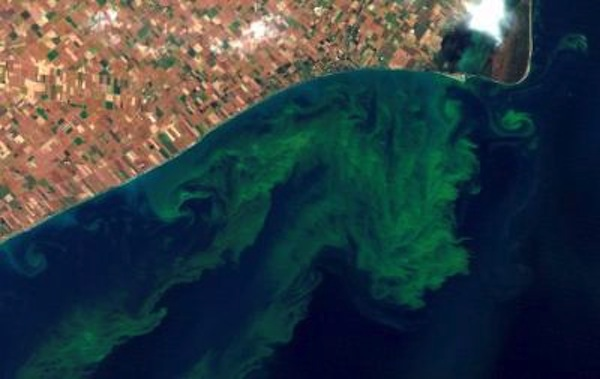 Ohio lawmakers OK Lake Erie algae prevention bill