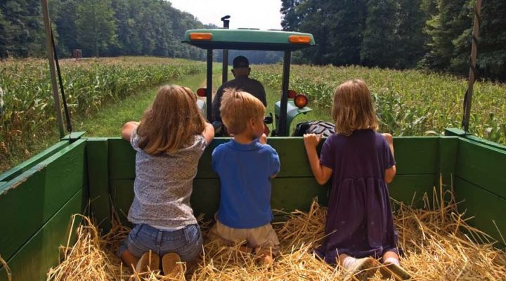 Ohio agritourism benefits farmers and consumers
