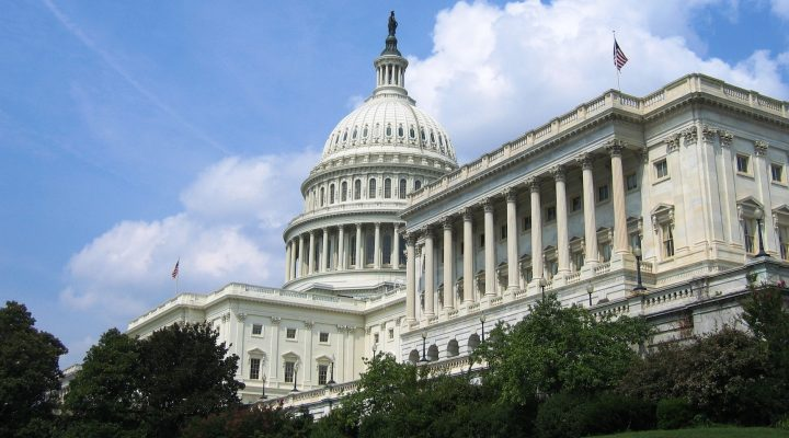 An image of the U.S. Capitol's South side (House of Representatives) (Martin Jacobsen)