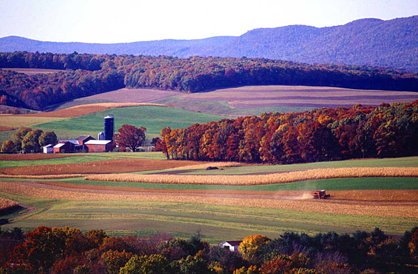 Wolf administration protects 30 farms, 2,300 acres
