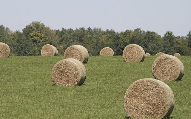 Tips for stacking and storing hay