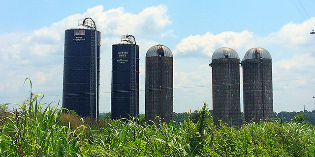 Farmers may struggle with grain storage