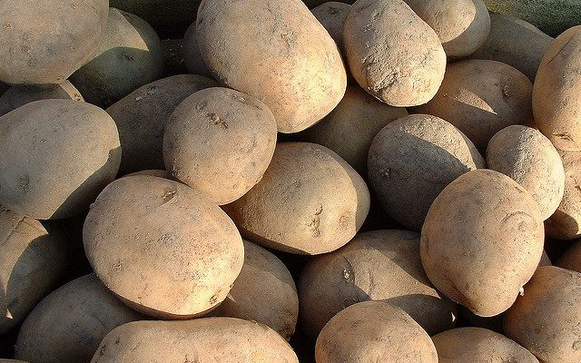 Record U.S. potato export value