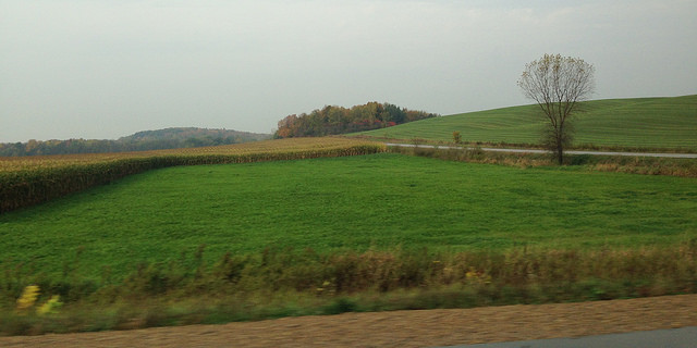 Mid-autumn farmland scenery from Oconto County, Wisconsin. (Cimexus via Flickr)