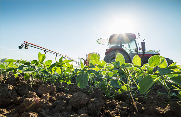 Extension and checkoff groups work together for a larger purpose. (Courtesy of Minnesota Soybean)