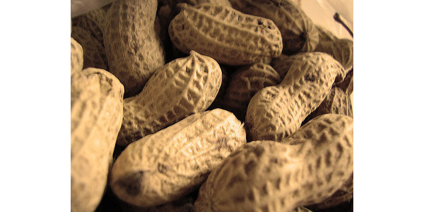 South Carolina Peanut Parity Act