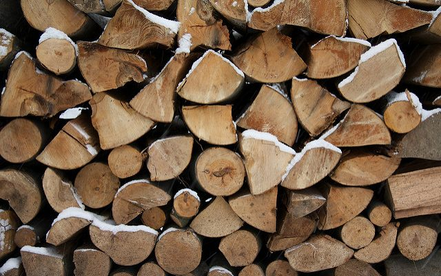Camping this summer? Leave firewood at home