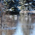 Fargo flood 2009. (DaKohlmeyer via Flickr)