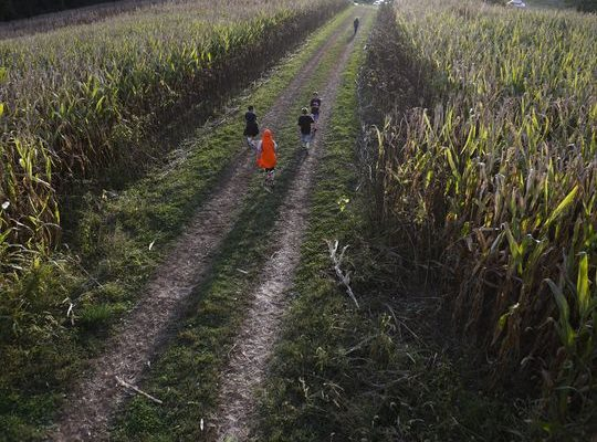 State looks for ways to boost burgeoning agritourism industry