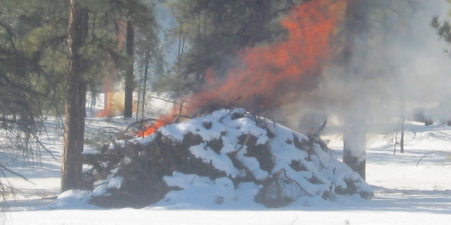 Burn permits in Black Hills Fire Protection District