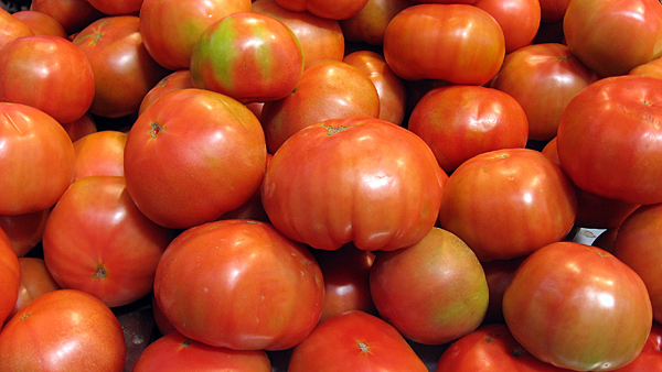 Indiana Tomato Grower Recognized By Red Gold