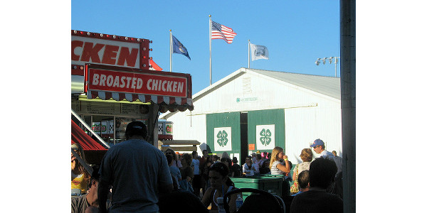 county fair in michigan