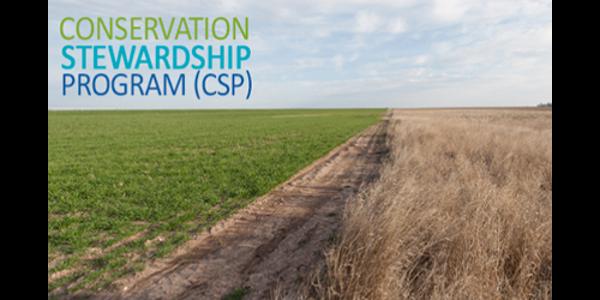(Image courtesy of USDA Conservation Stewardship Program)