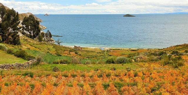 Severe Bolivian drought hurts crops