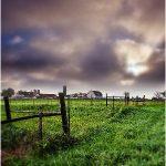 illlinois farm