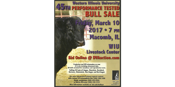 "A top set of bulls are on test at the Western Illinois University bull test station, and according to John Carlson, manager of the testing program for the WIU School of Agriculture, they have the data to back up the ""top"" claim. The top bulls will be available at the 45th annual bull test sale, which is set to begin at 7 p.m. Friday, March 10 at the Western Illinois University Livestock Center. Sale catalogs will be available after Feb. 8, Carlson said. (Courtesy of WIU)"