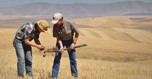 Study tracks 'memory' of soil moisture