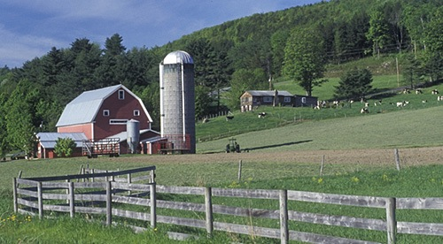 Green Mountain Dairy Schools