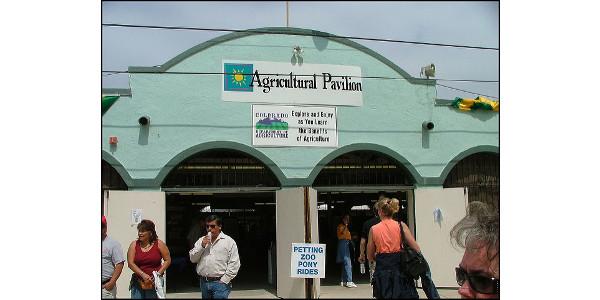 colorado state fair 2020