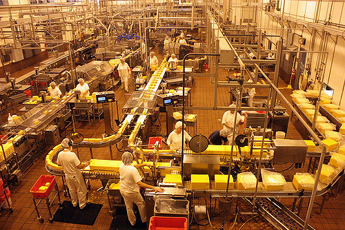 State Senate to vote on cheese plant