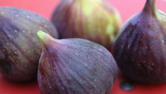 Wasp works wonders for Smyrna figs