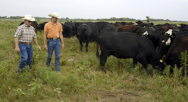Okla. farmland shows increased value