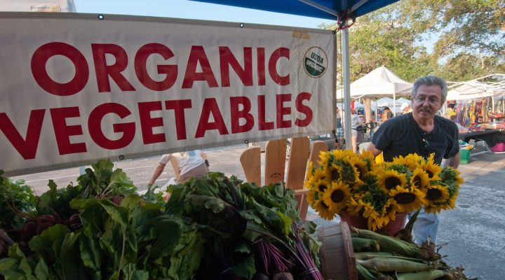 New program to foster organic growth