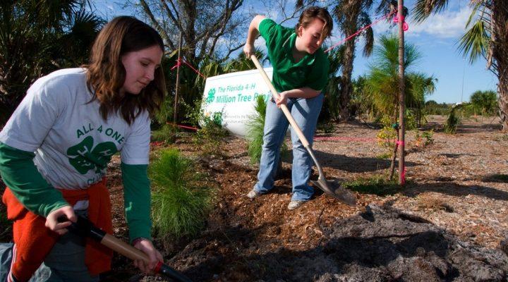 UF/IFAS celebrates Arbor Day