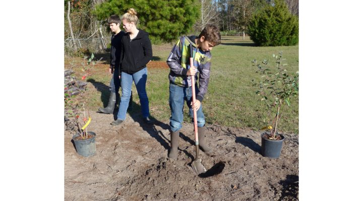 Breaking ground on new teaching orchard