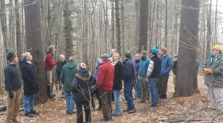Woodland management program expands