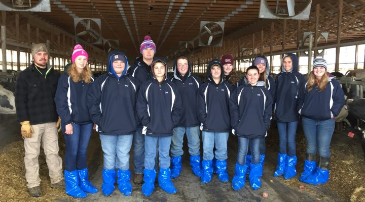 4-H'ers envision future of NY dairy