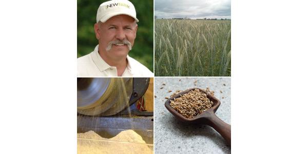 Illinois organic grains gathering Feb. 16