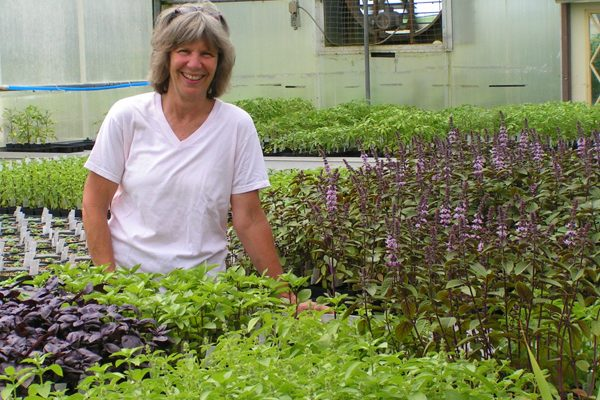 Dual-track offerings for hort farmers