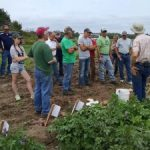 Potato growers gathered at Wilk Farms August 2016 for a field day highlighting the variety trial plots. (Photo: James DeDecker, MSU Extension)