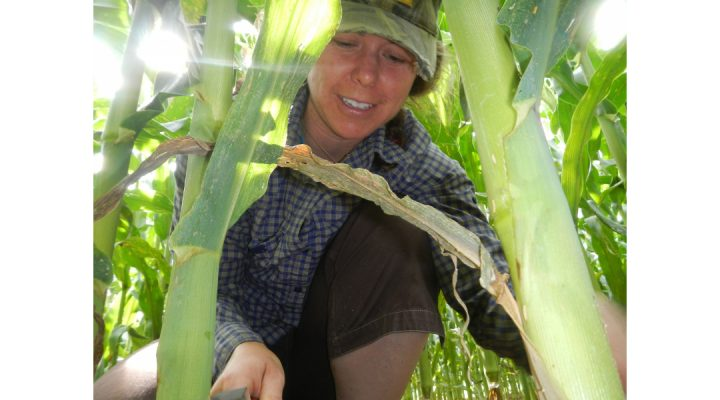 Soil food web research at NOFA conference