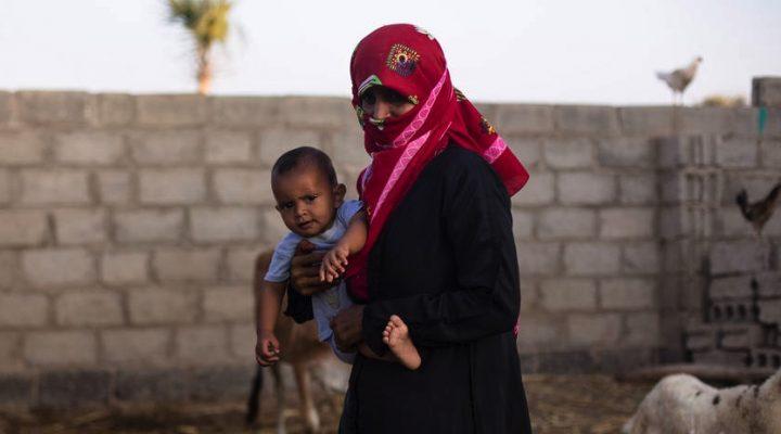 Alarming food insecurity in Yemen