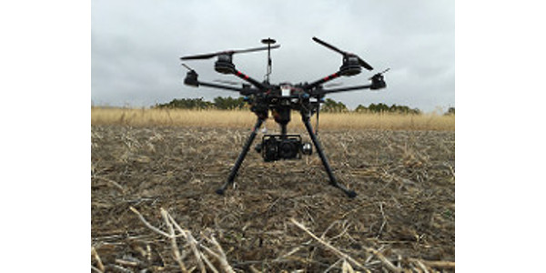 Using UAVs to improve wheat quality