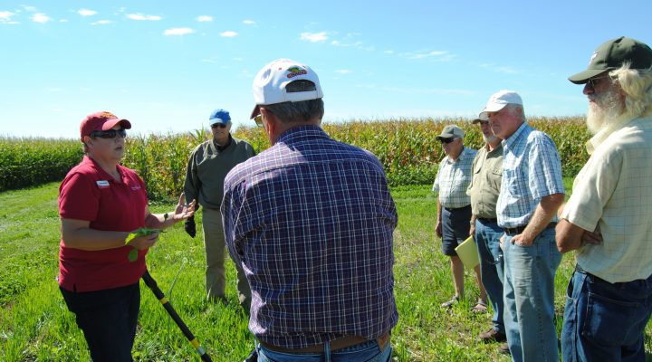 Angie Rieck-Hinz talks with farmers about the benefits of different types of cover crops at a field day at the Northern Research and Demonstration Farm. (Courtesy of ISU)