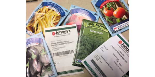 Seeds may be purchased from a variety of sources, including online, through a seed catalog, or in-store. (Photo: Emily Pfeufer, UK)
