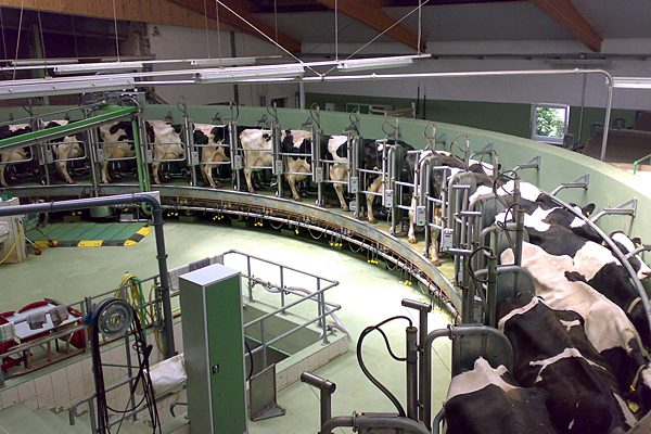 Goat, cow fluid milk processing meeting next week