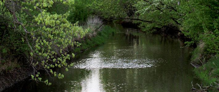 watershed meeting