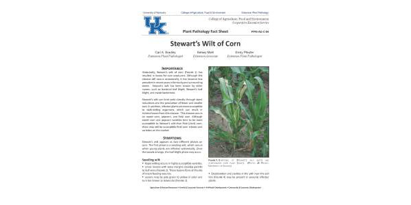This fact sheet provides information on symptoms, cause, disease development, and management. (University of Kentucky Extension)