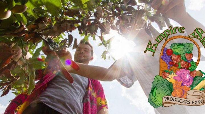 Tree fruit pest management