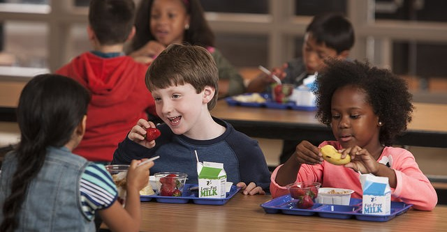 TDA school nutrition grant deadline