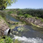 Drain tile emptying in a drainage ditch near Sac County, Iowa. (Photo by Clay Masters, Iowa Public Radio Images via Flickr)