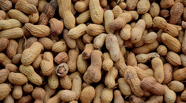 Oklahoma Peanut EXPO set for March 24