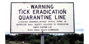 Texas cattle fever ticks are back