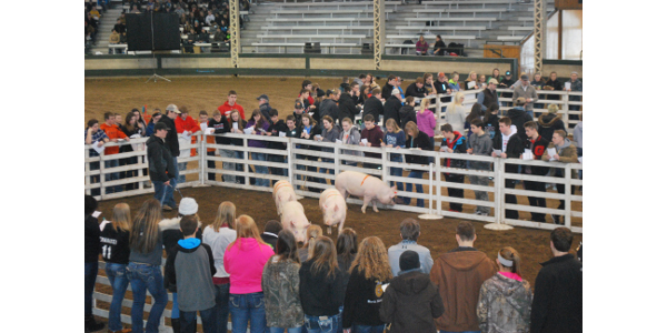 A team of FFA members from Southeast Polk High School in Pleasant Hill took top honors in the Iowa Pork Producers Association's 9th annual Youth Swine Judging Contest at the Iowa State Fairgrounds in Des Moines on Jan. 26. (Courtesy of Iowa Pork Producers Association)