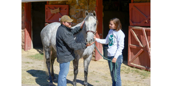 A Temple Grandin Equine Center is planned as part of the National Western Center, but equine assisted therapies and activities (EAAT) – which are utilized for a wide range of health conditions and special challenges – will begin in Denver in mid-March. (Colorado State University)