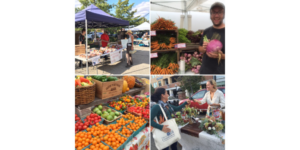 In February, The Land Connection kicks off the Mastering the Farmers' Market series in Champaign and Springfield with workshops designed to help farmers' market vendors build their brand, attract more customers, and explore small business basics. (Courtesy or The Land Connection)